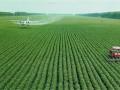 政策重点扶持100亩左右土地经营规模