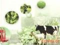 肉牛补充饲料的制作方法