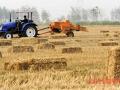 小麦秸秆还田后应注意的问题