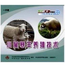 小尾寒羊养殖技术 羊病防治最新套装(3书+3光盘)