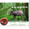 送家人,送健康!预订中秋遥远村庄野猪肉送红酒橄榄油限时优惠